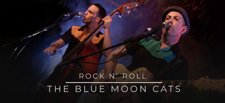 The Blue Moon Cats